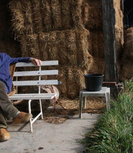 'Opa schoot een varken dood en kreeg een borrel', en andere verhalen uit Brummen