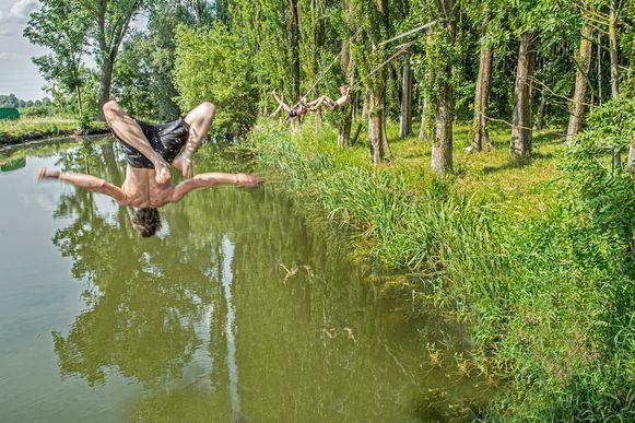 Jonah Muylle geeft het voorbeeld en neemt een duik in de vijver vlakbij De Schaduw.