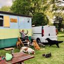 Heidi van Sambeeck organiseert hondenvakanties. Baasjes krijgen elke dag foto's via de app.