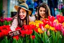 Looman: 'Laten we alsjeblieft niet vergeten om van bloembollen te blijven genieten. Ze maken het voorjaar niet alleen extra vrolijk, ze leveren ook de eerste voeding voor insecten.'