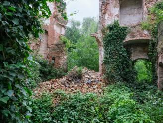 """Restauratie Prinsenkasteel nog wat dringender nu deel muur instort: """"Acute problemen snel aanpakken"""""""