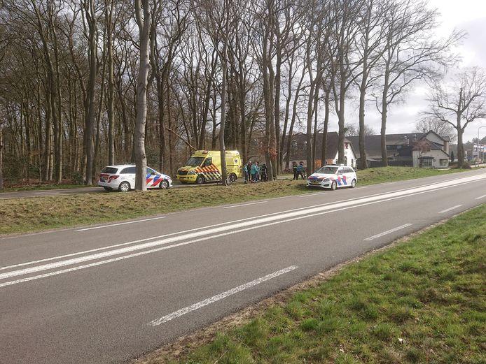 De wielrenners raakten gewond doordat een zwijn de weg overstak.