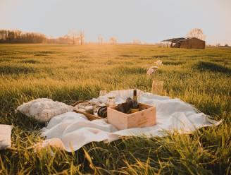 Toerisme Rupelstreek laat je picknicken met lokale lekkernijen