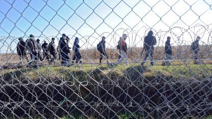 Hongarije zet door: werknemers en activisten van ngo's die migranten helpen riskeren celstraf
