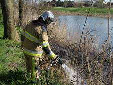 Bermbrand langs kanaal in Tiel geblust