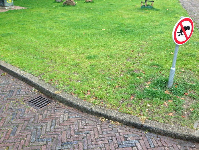 Hondenpoep in Zwolle