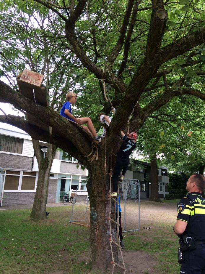 De boomhut die door de gemeente Tilburg werd weggehaald.