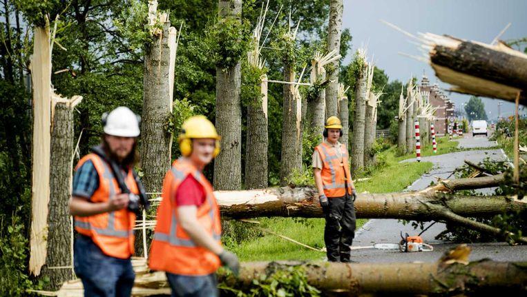 Langs een afstand van 200 meter vielen de bomen om Beeld anp