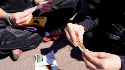 """MR-Kamerlid wil debat over legalisering cannabis: """"internationale tendens is er een richting liberalisering"""""""