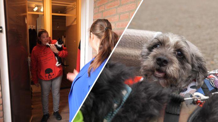 Shanon van Dierennoodhulp Noord-Brabant/ PET Support brengt een pakket aan huis.