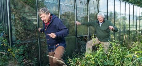 Hoe een overwoekerde tuin een hele buurt in Elburg bezig houdt (behalve de eigenaar zelf)