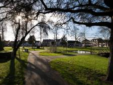 Monumentencommissie Nuenen keurt illegale plaatsing nieuwe lindeboom af