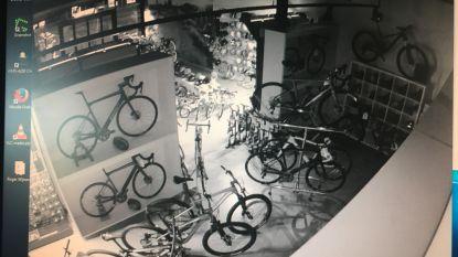 Bende opgerold die dure racefietsen stal in fietsenwinkels