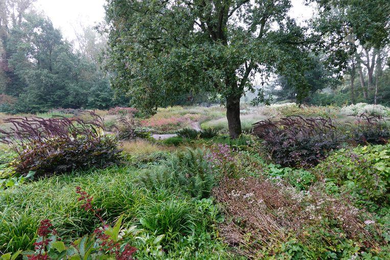 Maximilian park  Beeld Piet Oudolf