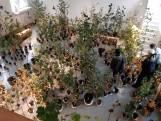 DDW in de binnenstad Eindhoven: Er staan bomen in de kerk