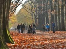 Wederom topdrukte in Brabantse natuurgebieden: 'Als het parkeren uit de klauwen loopt, dan handhaven we'