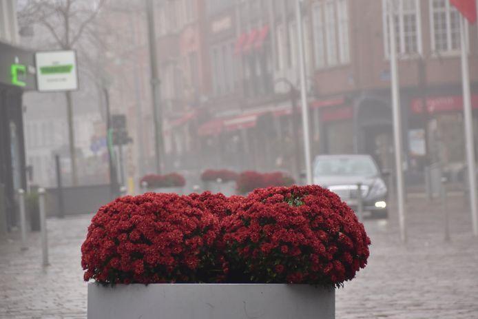 De uitgegooide chrysanten werden door omwonenden opnieuw in de bloembakken geplaatst op de Markt van Tielt..
