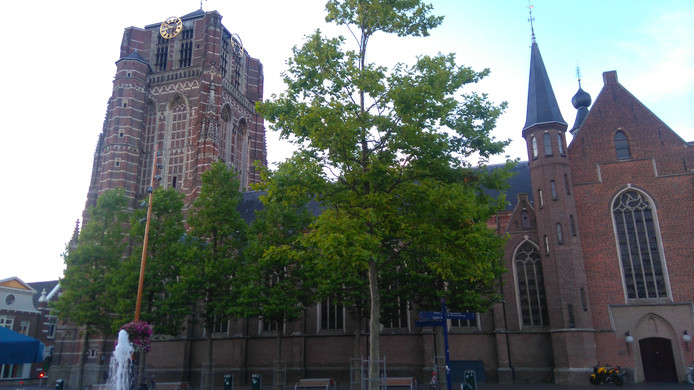 De basiliek in Oosterhout.