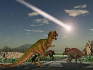 Honderd procent bewezen na Belgisch onderzoek: meteoriet deed dinosauriërs uitsterven