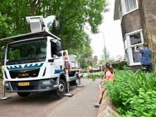 Oh jee: bomen knappen als luciferhoutjes aan rand Arnhemse wijk Paasberg