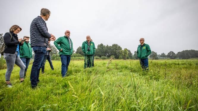 Enthousiasme alom over proef met weilandirrigatie in Geesteren: weidevogels de grote winnaar