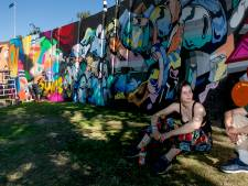 Graffitikunst in de Berenkuil, ook dat is Emoves
