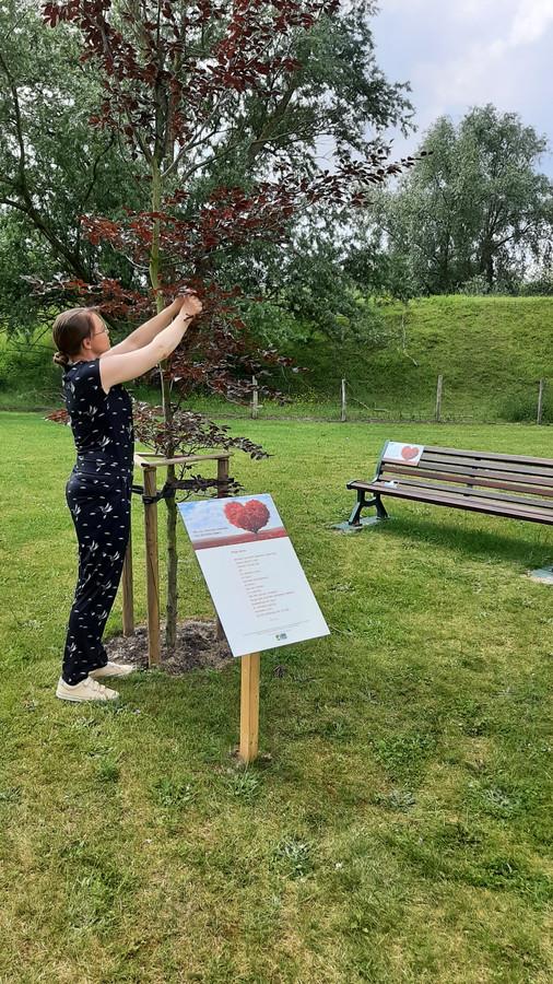 De Covid-herdenkingsboom is vol linten gehangen door mensen die een geliefde verloren.