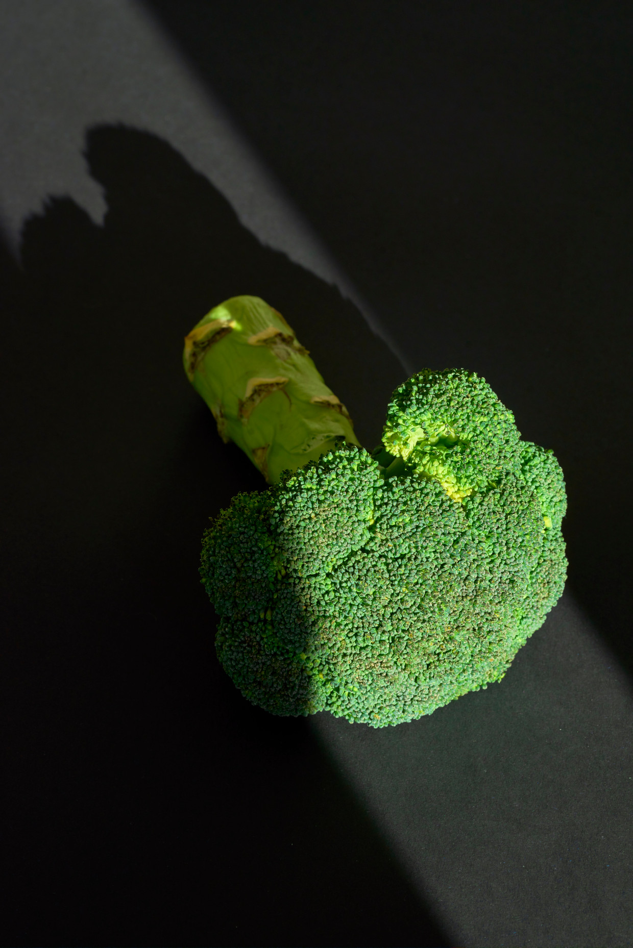 Bitter eten, zoals broccoli is gezond. Beeld Getty Images/EyeEm