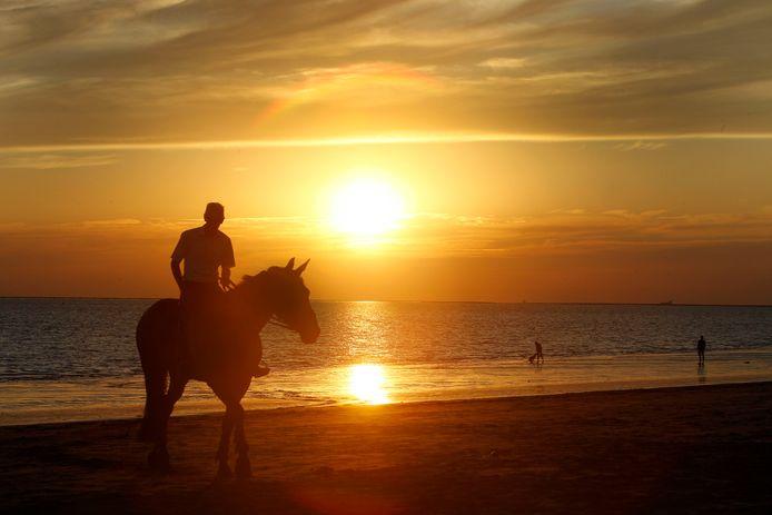 Elke gemeente hanteert zijn eigen regels overvoor het paardrijden op het strand.