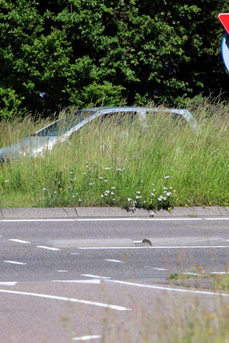 Automobilisten op Voorne-Putten klagen over hoge bermen: 'Je ziet elkaar niet'