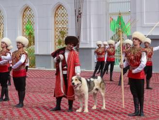 Nieuwe feestdag in Turkmenistan gewijd aan nationaal hondenras
