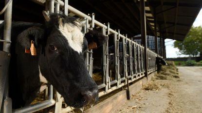Boerenforum organiseert infodag over klimaatadaptieve landbouw