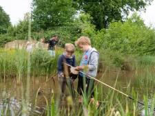 Geen zeeschorpioen, maar wel waterschorpioen gevonden bij Rijssense slootjesdag