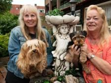 Buren Marijke en Janny zijn als familie: 'En de hondjes? Dat zijn bijna deelhondjes geworden'