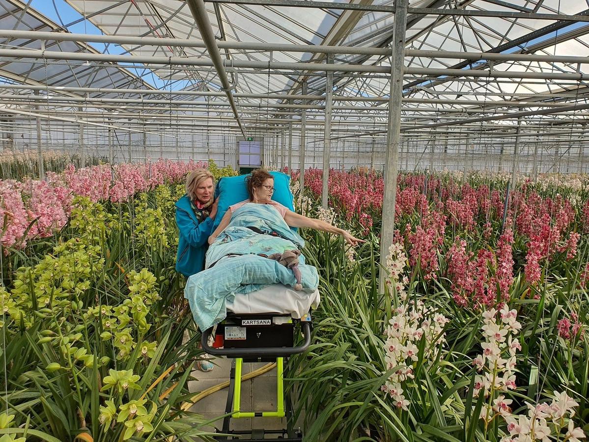 Gisteren (zondag) kon deze mevrouw toch nog één keer naar de Orchideeënhoeve, die hier graag aan mee wilde werken ondanks dat ze dicht zijn.
