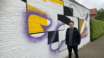 Kunstwerk 'De Lieremanschilder' vrolijkt muur op in Naenakkerpad