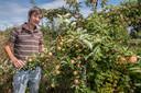Wouter van Eck onderzocht de duurzaamheid van landbouwsystemen in Kenya en was campagneleider Landbouw & Voedsel bij Milieudefensie. In 2009 begon hij met de aanplant en agrarische exploitatie van Food Forest Ketelbroek. In Groesbeek bij Nijmegen ligt Ketelbroek, één van de eerste voedselbossen van Nederland. Initiatiefnemer Wouter van Eck was hiermee in 2010 echt een pionier. Het voedselbos heeft zich ontwikkeld tot een bijzondere biotoop met jaarlijks rijkere oogsten maar ook steeds meer soorten