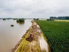 Boeren versterken buitenpolder, Maas en Waal onvergelijkbaar met Limburg
