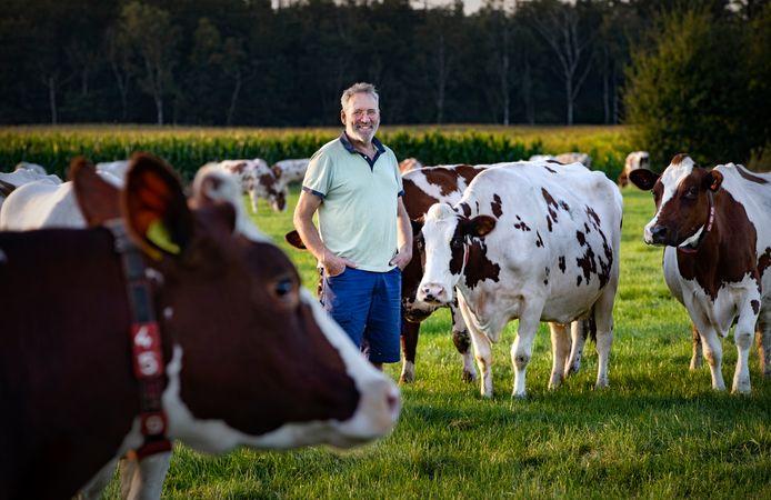 Melkveehouder Henk Kerkers bij zijn koeien op zijn bedrijf in Sterksel, aan de rand van de Strabrechtse Heide.