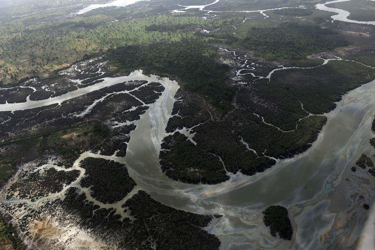 Dit gebied in de Nigerdelta is aangetast door olielekken door zowel oliedieven als Shell. Beeld AFP