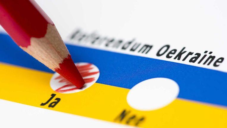Illustratie bij het Oekraïne-referendum. Beeld Anp