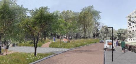 Schrappen 'illegale' parkeerruimte Lovensdijkstraat zit VVD Breda niet lekker: 'Vraag naar parkeerplaatsen blijft'