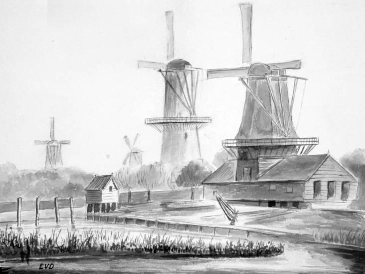 Hoe de Dordtse molen De Zwaan in Amerika terechtkwam