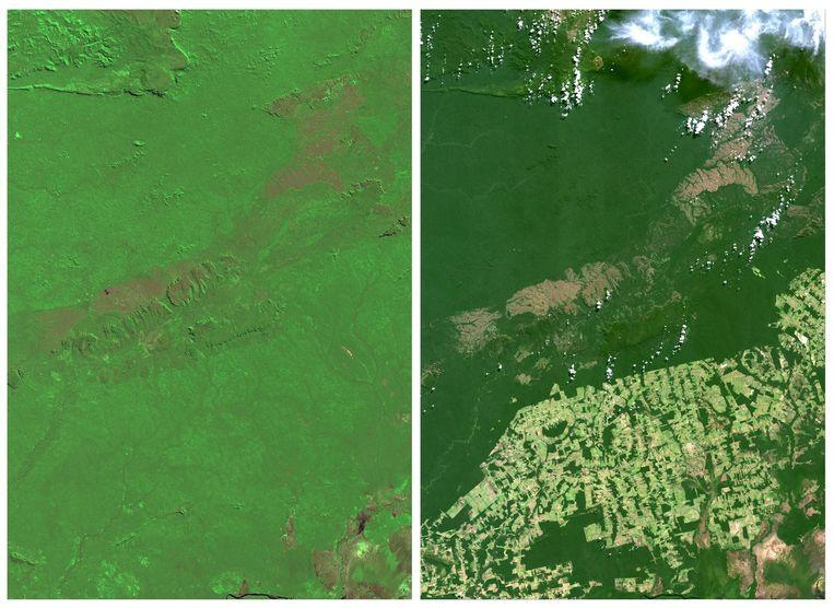 De NASA heeft satelietbeelden vrijgegeven waarop de ontbossing te zien is in de staat Rondonia in Brazilië. Links: 1975 en rechts: 2014. Beeld Reuters