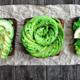 Opmerkelijk: er komt nu een 'light-variant' van de avocado