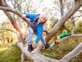 Nog op zoek naar toffe activiteiten voor jou en je gezin tijdens de herfstvakantie? Dit zijn de 8 leukste activiteiten in Mechelen en omstreken