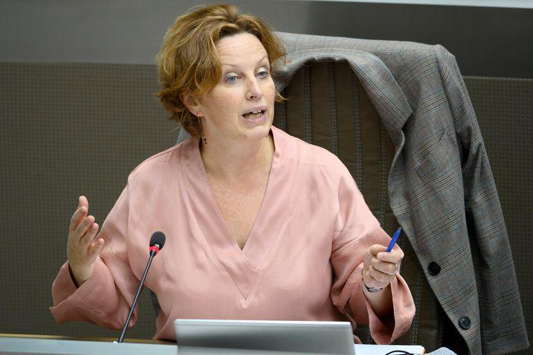Mieke Schauvliege (Groen): 'Grond met vervuiling hoger dan 70 microgram per kilogram grond is afvalstof en moet volgens onze Vlaamse milieuwetgeving naar een stortplaats.' Beeld Photo News