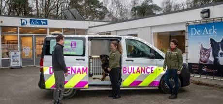 Harderwijk is dé plek voor alle dieren in nood op de Noordwest-Veluwe, negen gemeenten doen mee