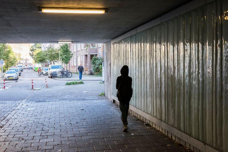 Het lukt Noord-Hollandse gemeenten niet om de meest kwetsbare kinderen voldoende te beschermen, concludeert de IGJ  Beeld Hollandse Hoogte / Julie Hrudova