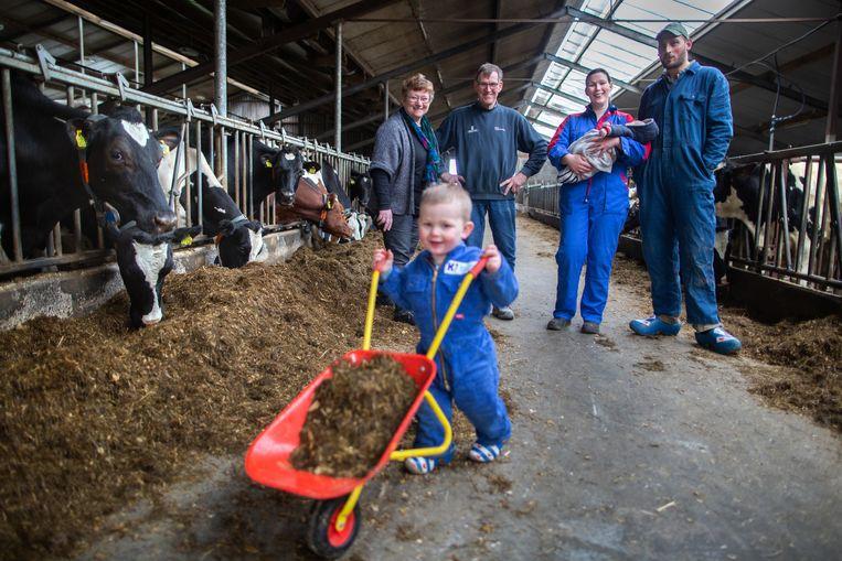 De familie Meijer heeft een melkveehouderij en ijsboerderij vlak bij een Natura2000-gebied.  Beeld Herman Engbers